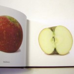 Jonathan Gerken – Apples I have Eaten.