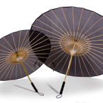 About the World's Only Biodegradable Umbrella