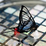 Stanford researchers' new high-sensitivity electronic skin.