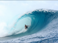 Surf Photography Showcase.