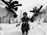 A Visual Anthropology of the World's Last Living Nomadic Peoples.